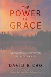 THE POWER OF GRACE Recognising Unexpected Gifts on the Path by David Richo